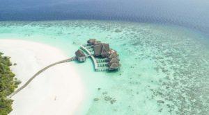 finns det ormar på maldiverna