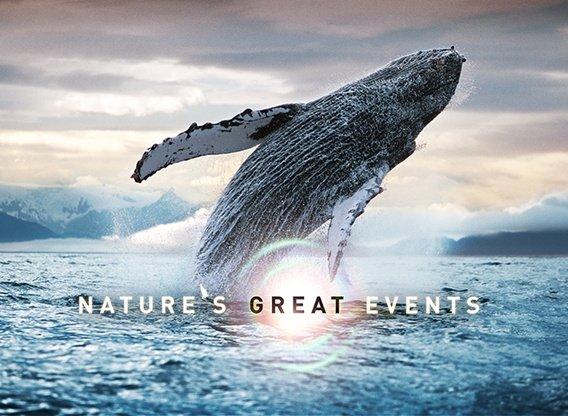Natures great events dokumentär