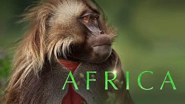 africa dokumentären